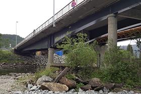 Bårdshaug bridge