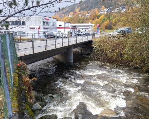 Sårheim bridge 2